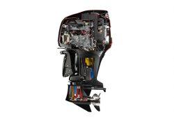 Johnson Deniz Motoru Yedek Parçaları | 0533 748 99 18